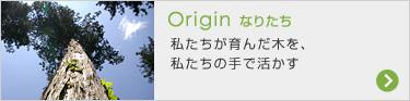 Origin なりたち